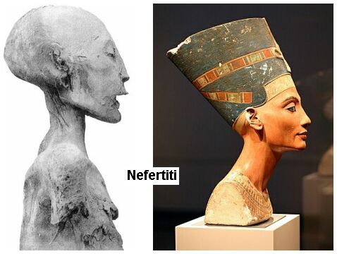 NefertitiBustMummyProfileComparison.jpg